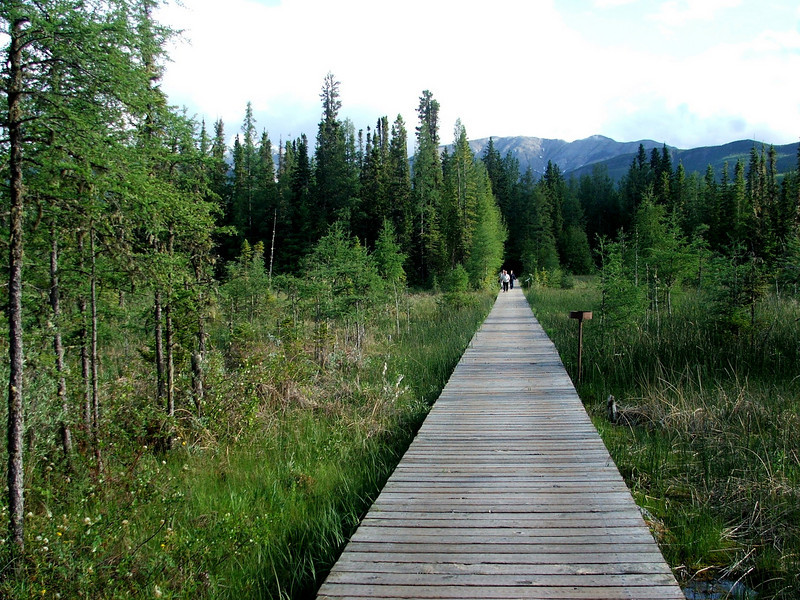 Liard Hot Springs Provincial Park, Northern British Columbia