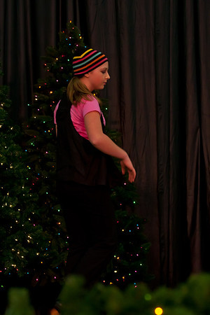 The Dancin' Place Festival of Trees 2011