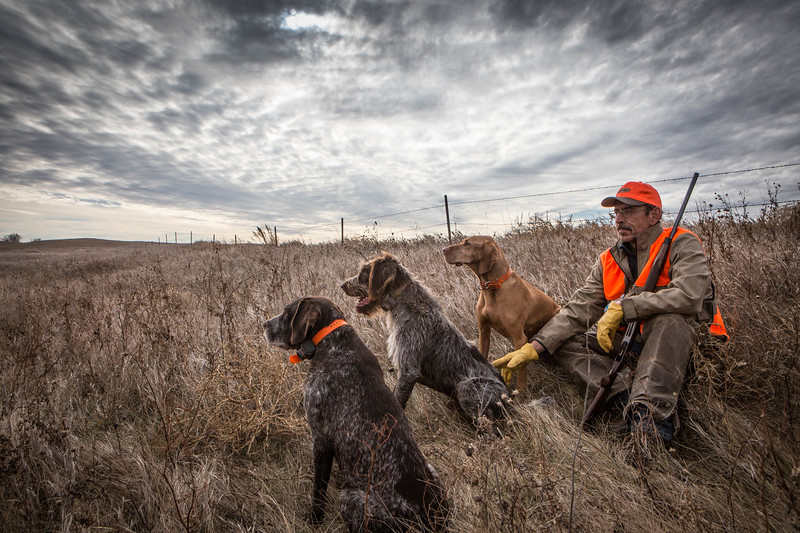 Hunter with his pointer dogs