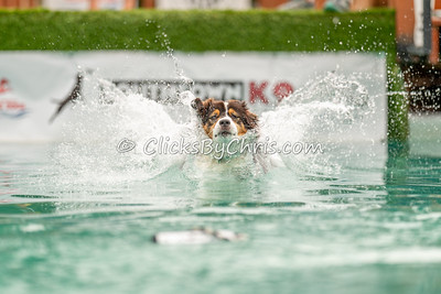 Misc Splash 5