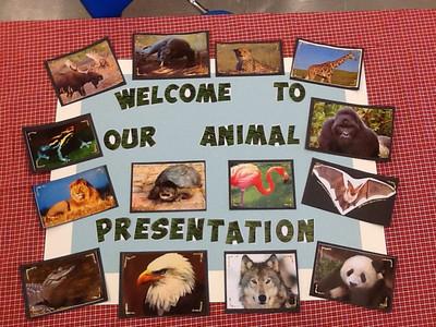 1F Animal Presentations