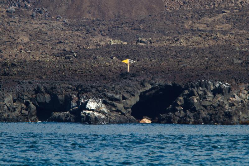 Equator marker at Isabela, Galapagos, Ecuador (11-24-2011) - 904.jpg
