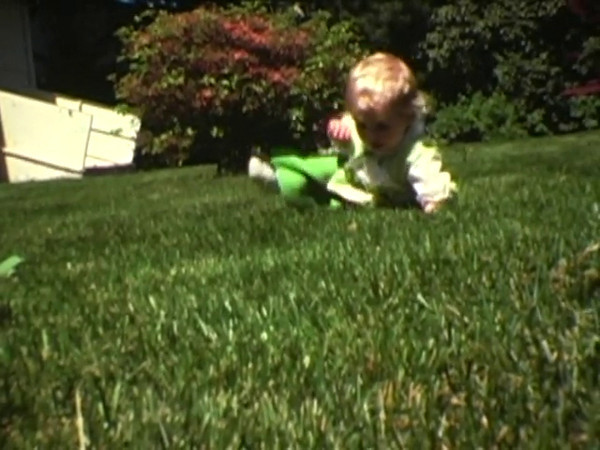 Super-8 Home Movies filmed by Timothee's Father between 1973 and 1981 