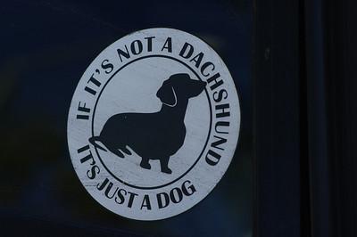 Wiener Dog Picnic