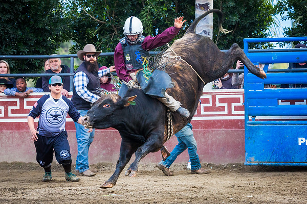 All American Junior Bull Riding - March 2019