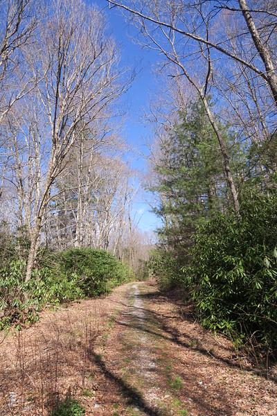 Devils Elbow Trail - 3,700'