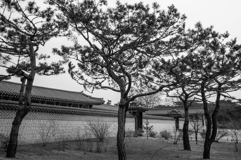 20170325-30 Gyeongbokgung Palace 051.jpg