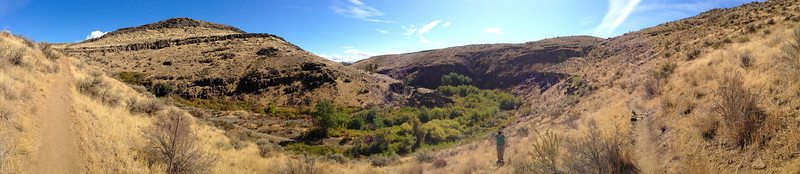 Cowiche Canyon near Yakima, WA