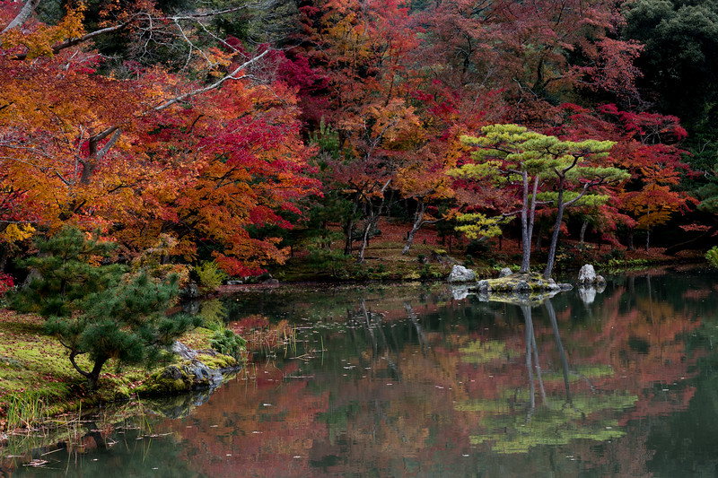 enche-japanese-garden-01.jpg