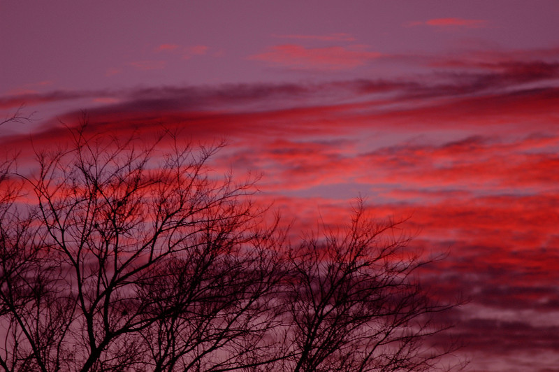 Red Sky 93.jpg