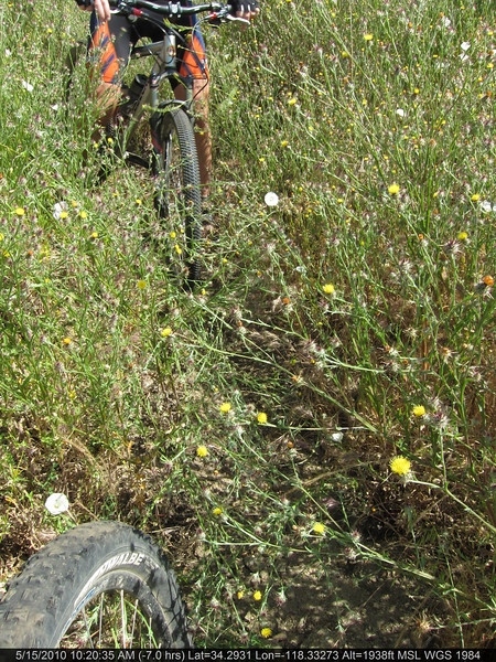 20100515018-Doc Larson Trail Recon.JPG