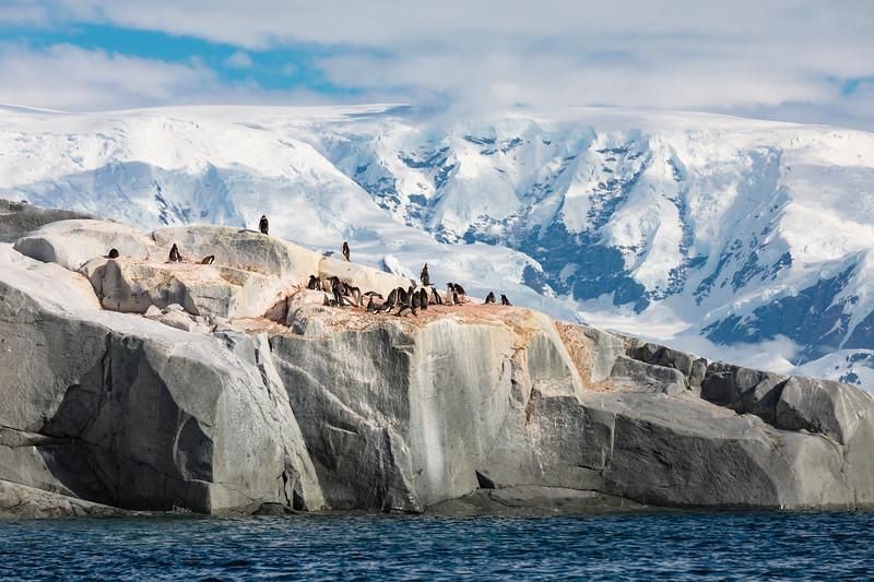 _MG_7439_20170122_Antarctica.jpg