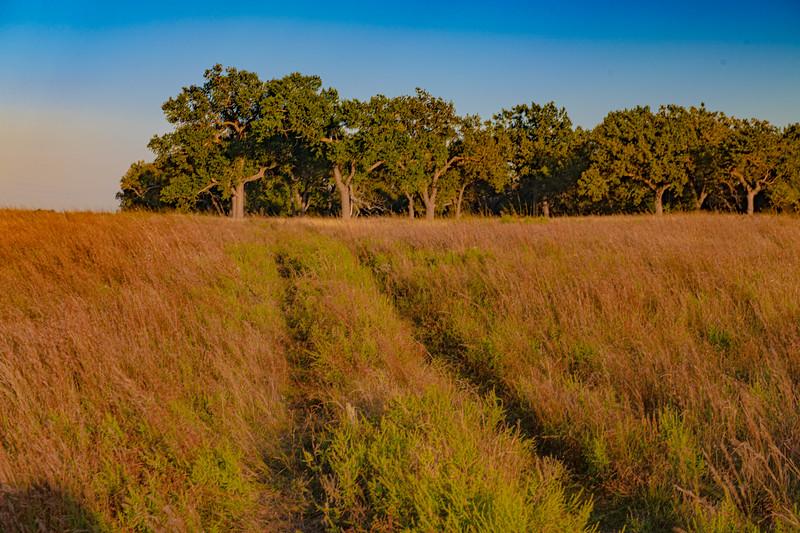 Horn Ranch-1443.jpg
