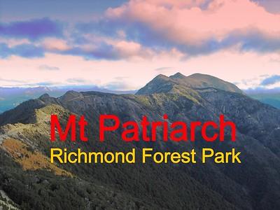 Mt Patriarch