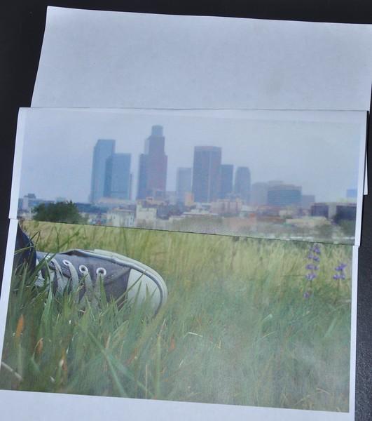 Eco-Interns_Billboard_Love-Your-Parks_idea.JPG