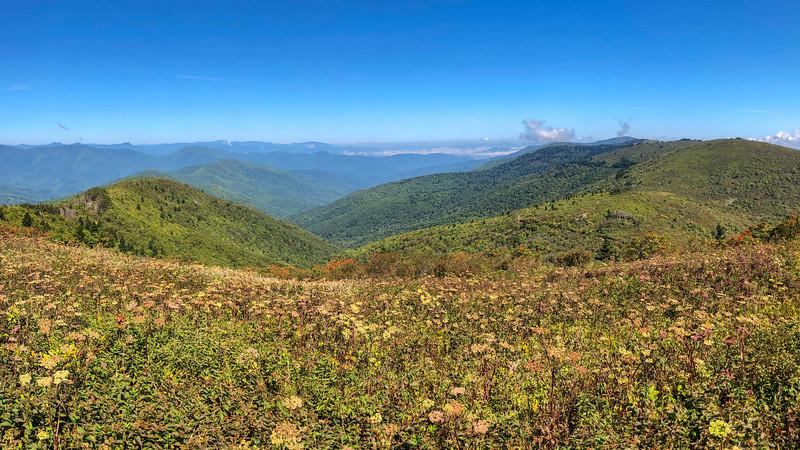 Art Loeb Trail (#146)