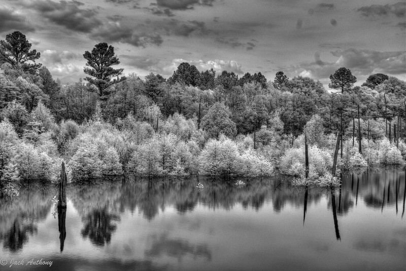 Dead Lakes, Wewahitchka, FL in infrared