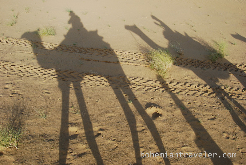 camel shadow on sand.jpg
