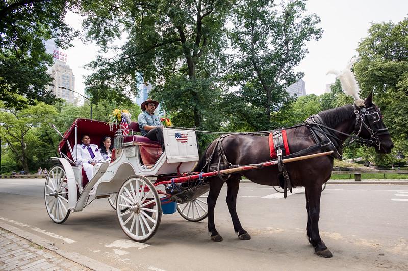 Central Park Wedding - Ronica & Hannah-24.jpg
