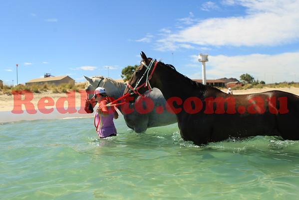 2012 01 21 Naval Base Beach