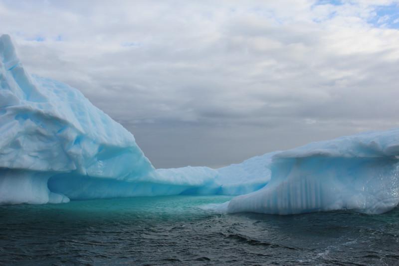 Antarctica 164.JPG