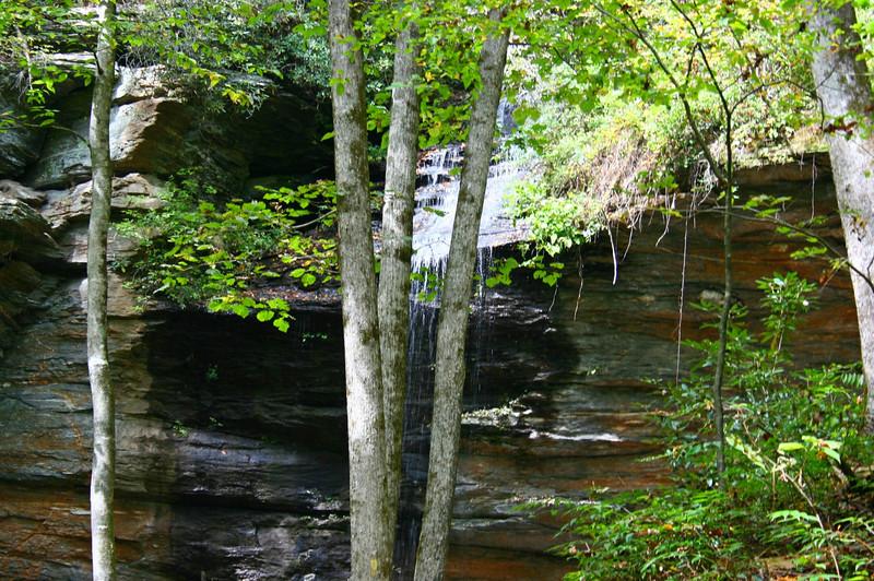 Pisgah Forest 9-30-12 41.jpg