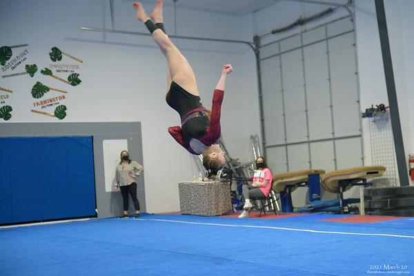 Gymnastics 2021 March 21