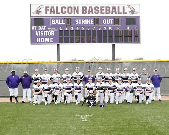 TCHS Baseball Teams 18-19