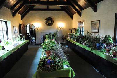 9/25/10 Farmington: A Community Remembers - Flower Show and Playfest