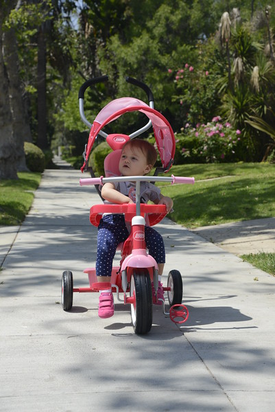 New Tricycle...YAY!