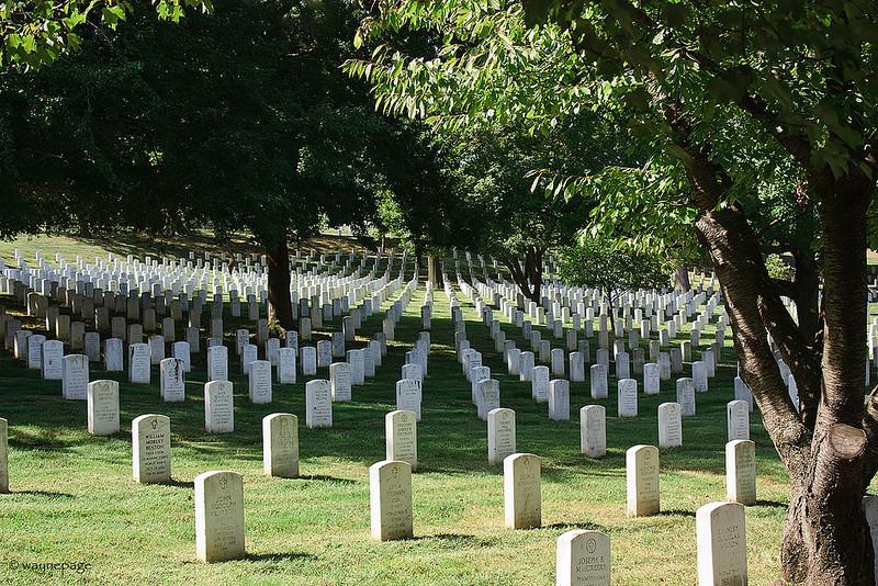 Arlington 2
