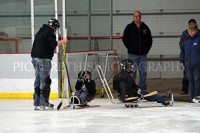Sled Hockey Clinic 4-2-17