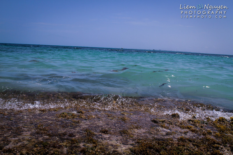 Cancun2012_099_WM.jpg