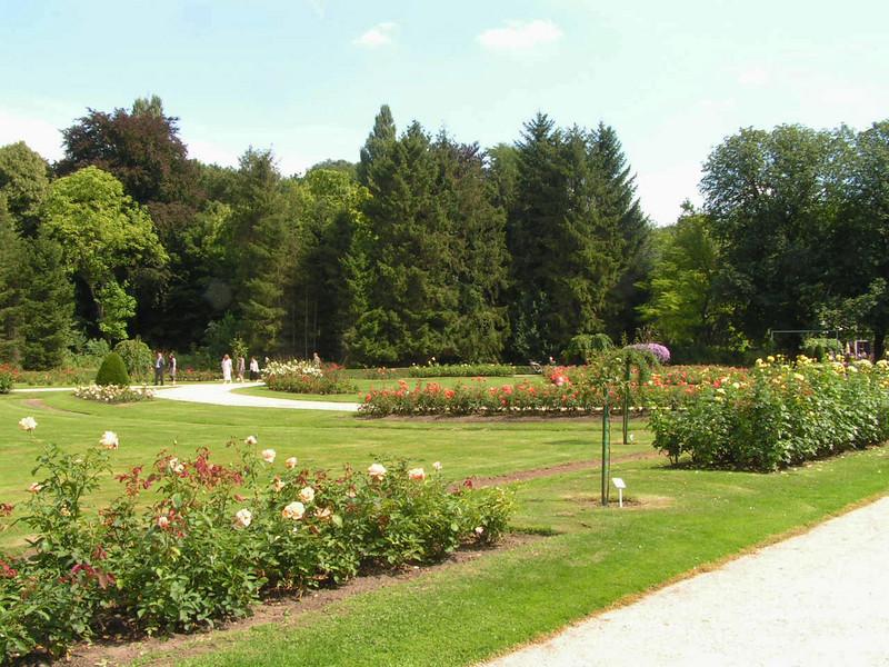 """""""De Rozentuin"""" In Het Vrijbroekpark."""