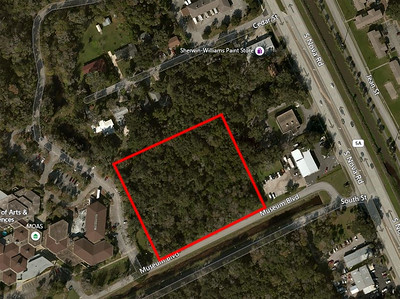 1050 Museum Blvd. Vacant Parcel next to Museum of Arts and Sciences, Daytona Beach