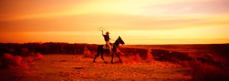 CowboyWhipA.jpg