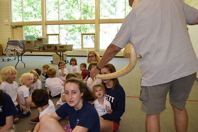 2015 Dan The Animal Man Summer Camp