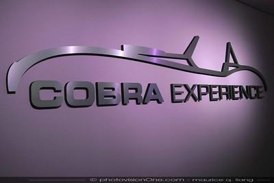 Cobra Experience