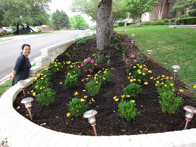 New Landscaping, March 2011