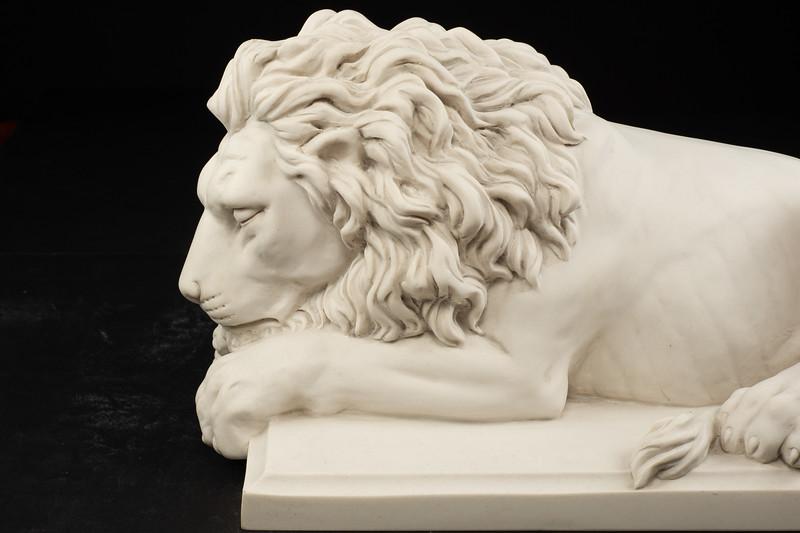 Large-Lions-413.jpg