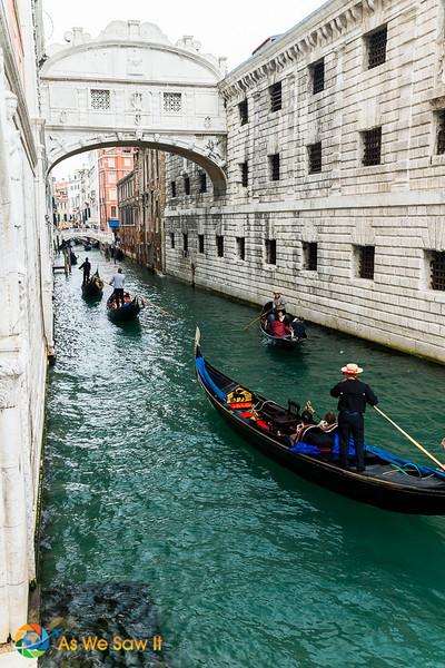 Venice - 2013