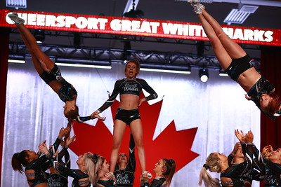 Cheer Sport  Great White Sharks - Worlds Face-Off Level 5