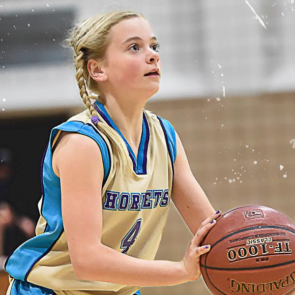 Hornets Basketball