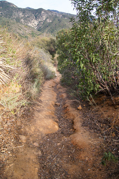 20120111008-Chaney Trail Pipes.jpg