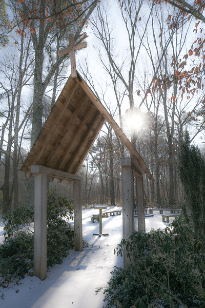 January Snow-18.jpg