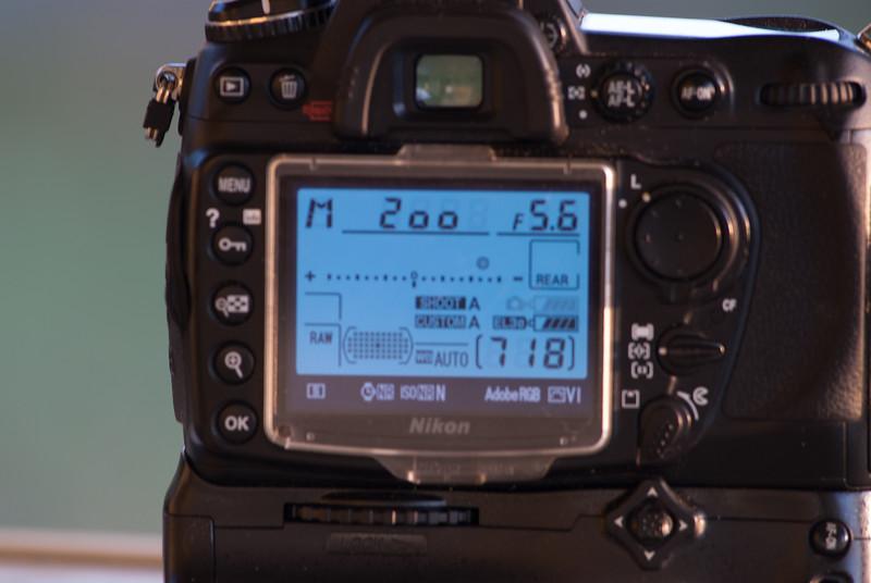 vanelli-01048.jpg