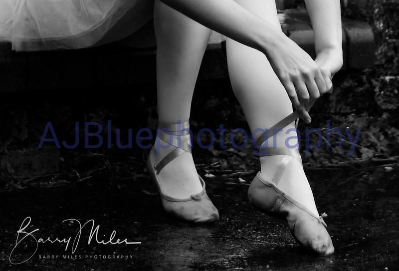 ballet shoe.jpg