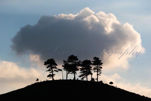 Dorset Views