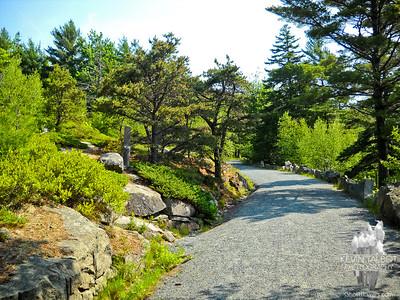 Parkman Mountain-Gilmore Peak-Sargent Mountain 6/20/2012