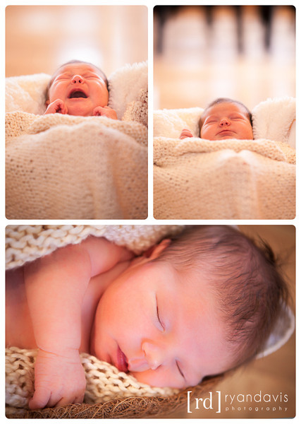 Newborn photographers Rockford, IL